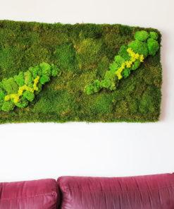 cuadro preservado musgo