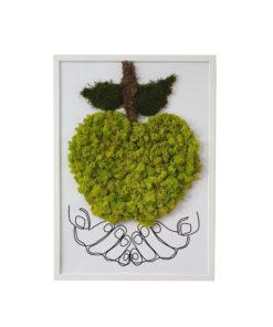 cuadro manzana preservado