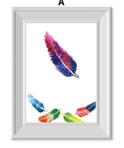 lámina de plumas coloridas