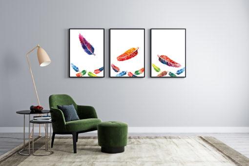 cuadros decorativos de plumas